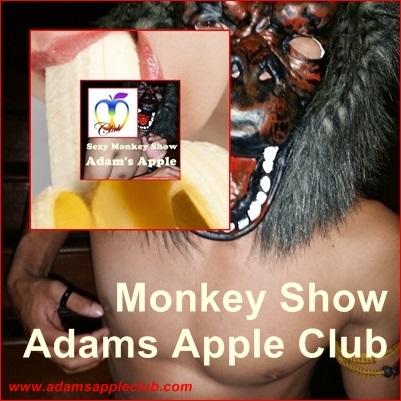 Monkey Show Adams Apple