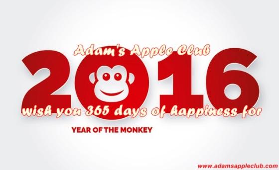 01.01.2016 Year of the Monkey Banner.jpg