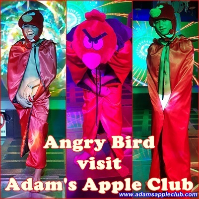 07.11.2016 Angry bird visit Adam's Apple Club.jpg