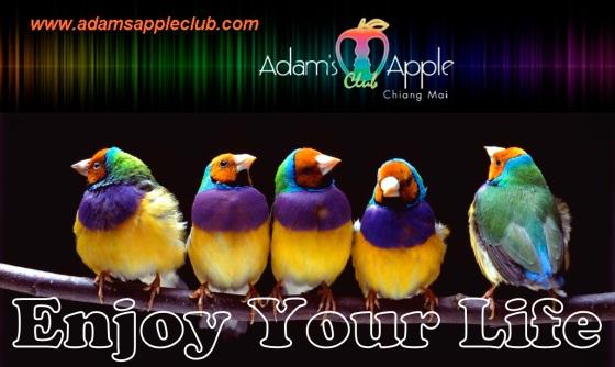 enjoy-gay-life Adams Apple Club