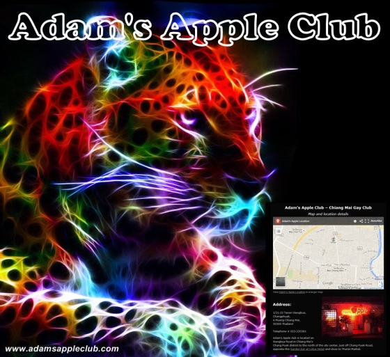 15.10.2017 Adams Apple Club Tiger MAP Chiang Mai b.jpg
