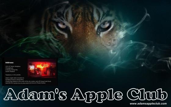 15.10.2017 Adams Apple Club Tiger MAP Chiang Mai.jpg