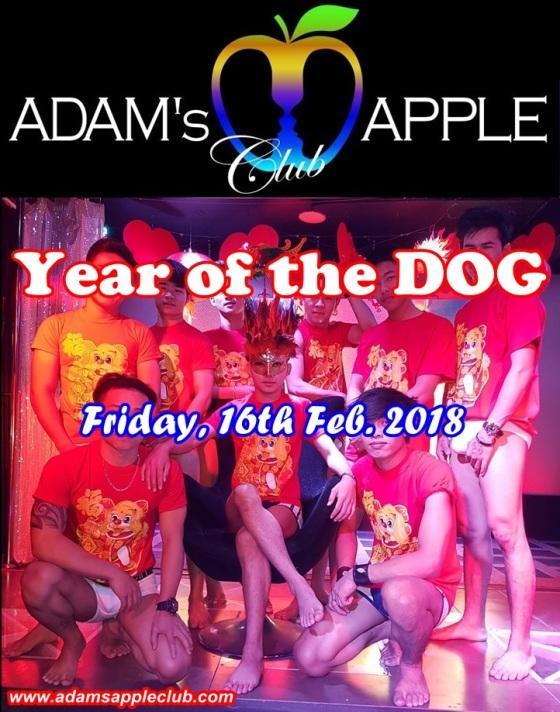 06.02.2018 Adams Apple Chinese New Year.jpg