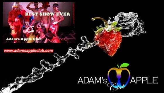 19.02.2018 Adams Apple Club Best Show e.jpg