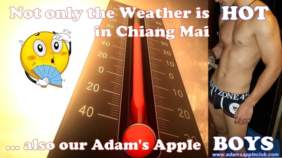 21.03.2018 Sooo... HOT Adams Apple Club Chiang Mai c.jpg