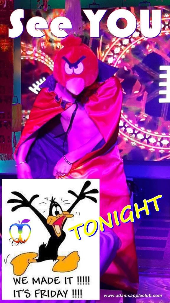 Friday Night Adams Appel Club Chiang Mai