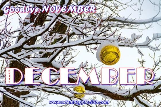 Goodbye NOVEMBER WELCOME DECEMBER