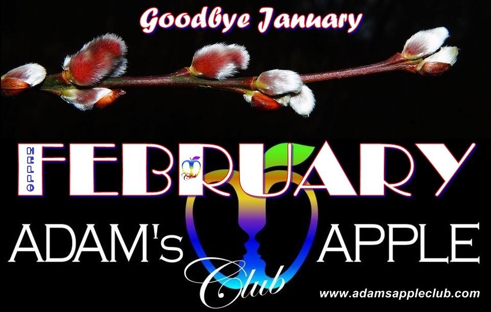 Hello February Adams Apple Club Chiang Mai