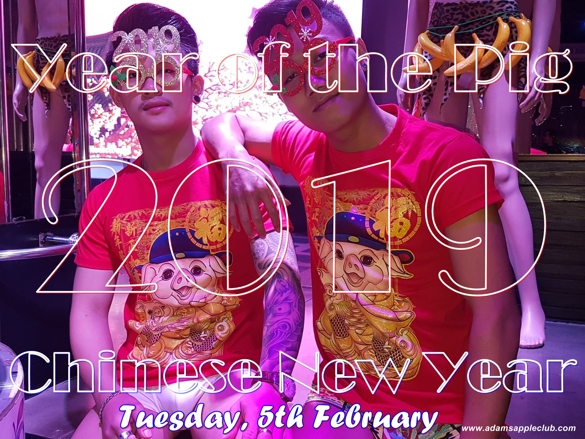 Chinese New Year 2019 – Year of the Pig Adams Apple Club