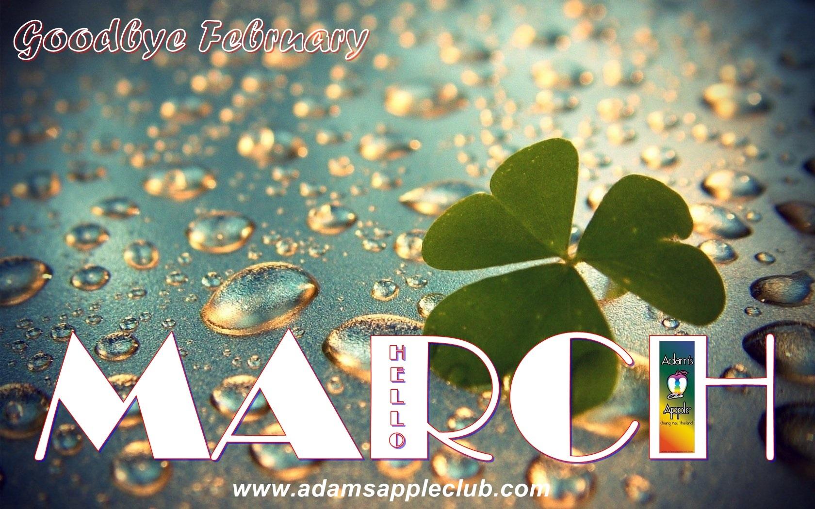 Adams Apple Club Chiang Mai MARCH 2019