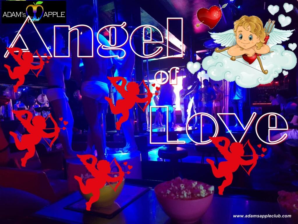 Angel of Love Adam's Apple Club Chiang Mai