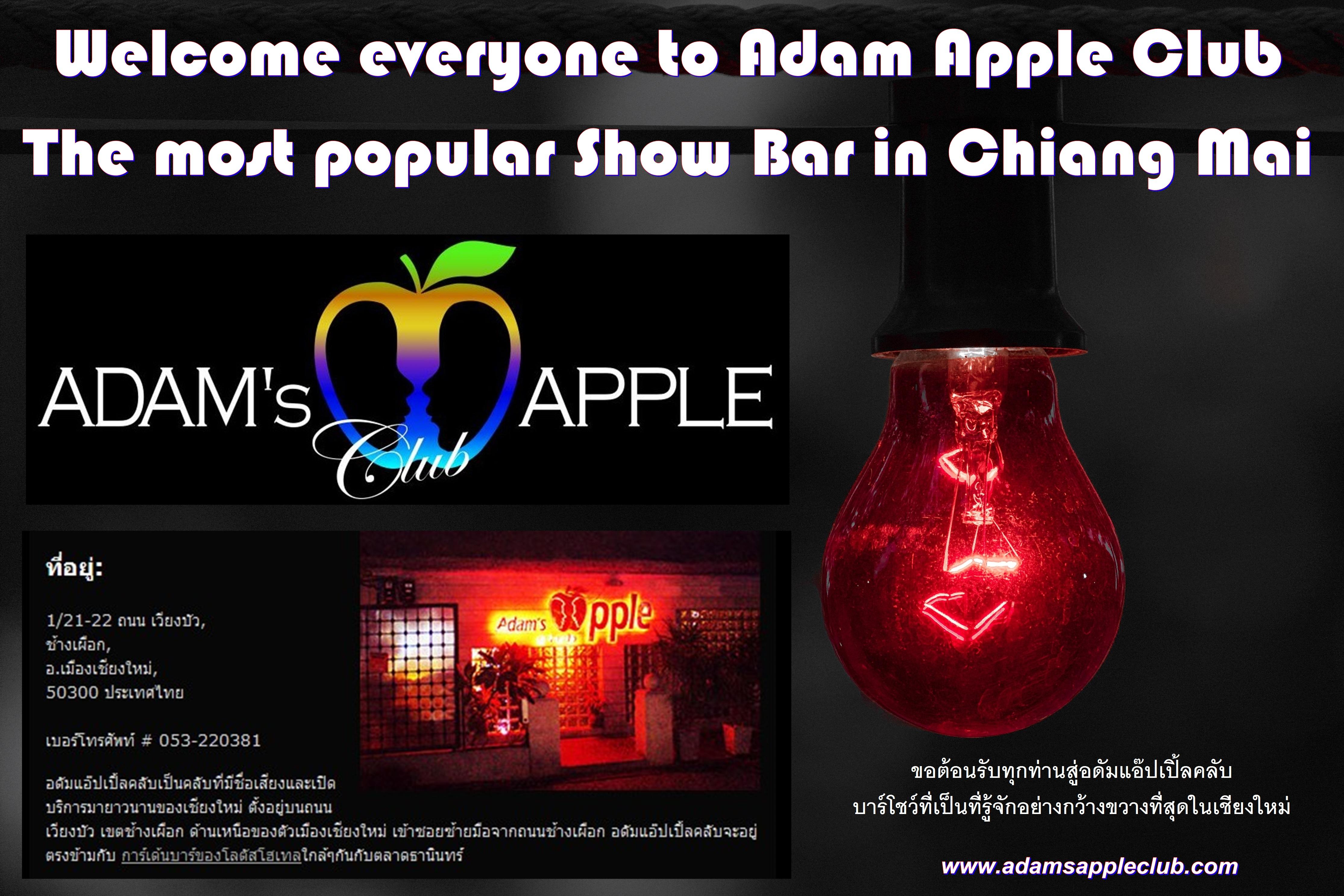 Most popular Show Bar Adams Apple Club