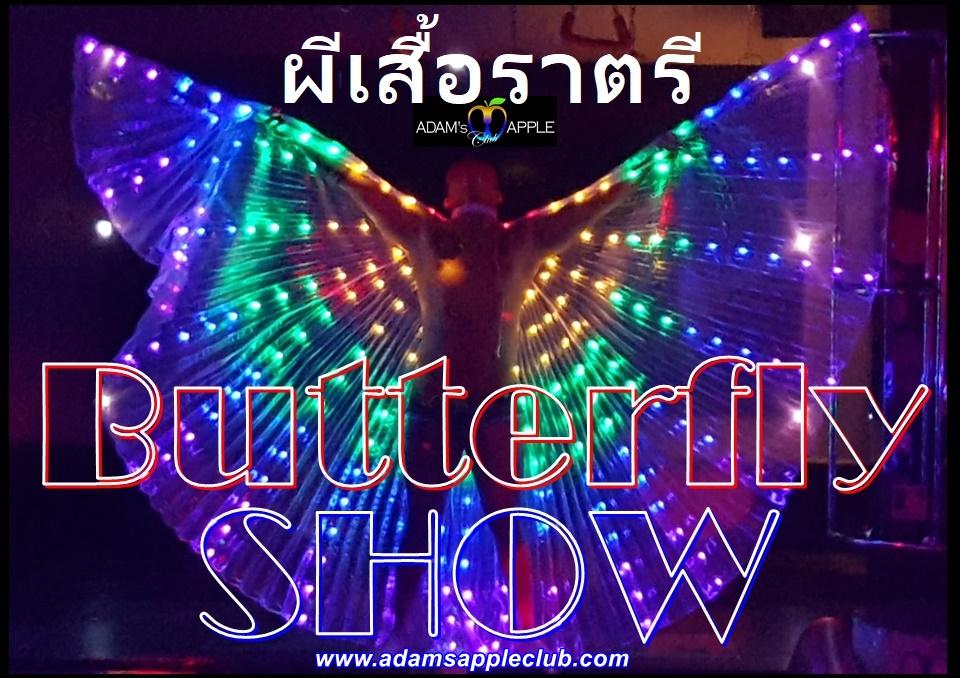 Butterflies ผีเสื้อราตรี Adam's Apple Club Chiang Mai