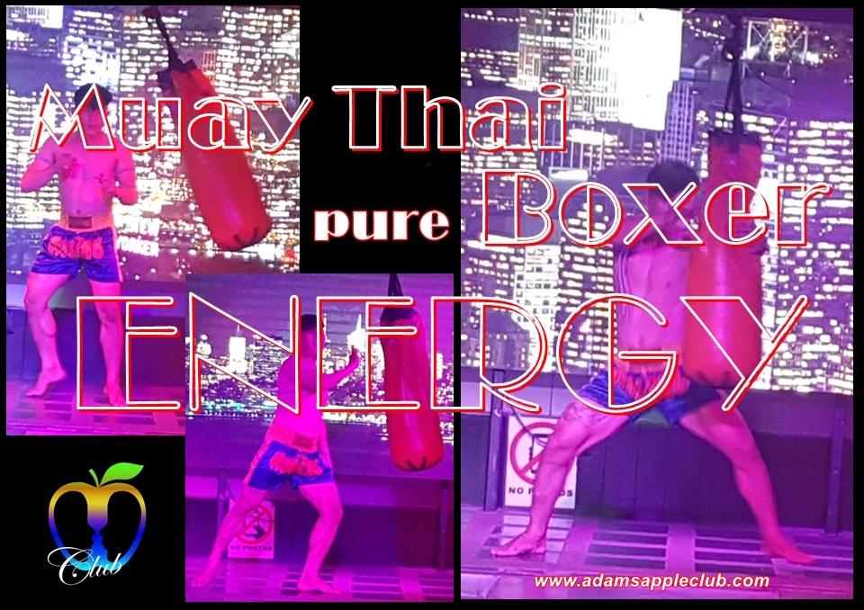 Muay Thai Boxer pure ENERGY Adams Apple Club