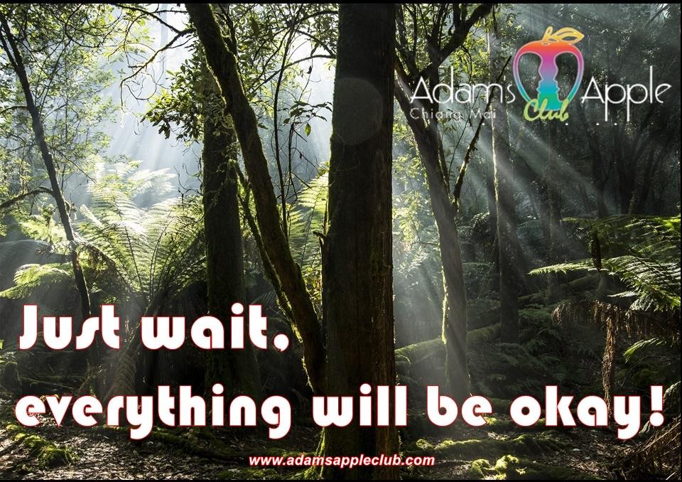 Just wait, everything will be okay! Adams Apple Club