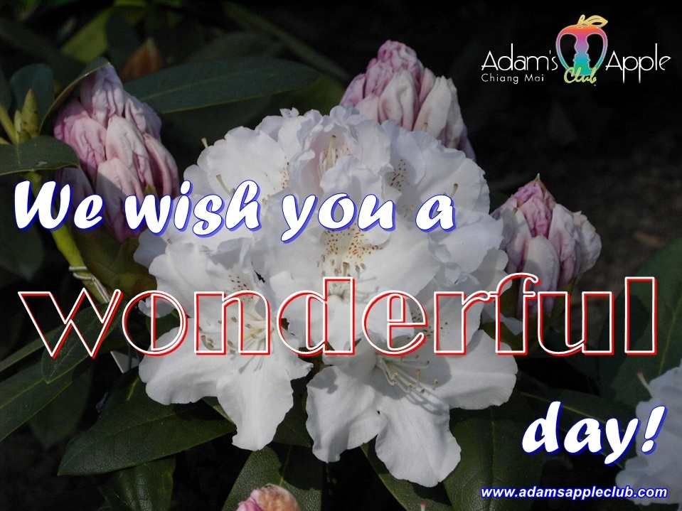 We wish you a wonderful day! Adams Apple Club