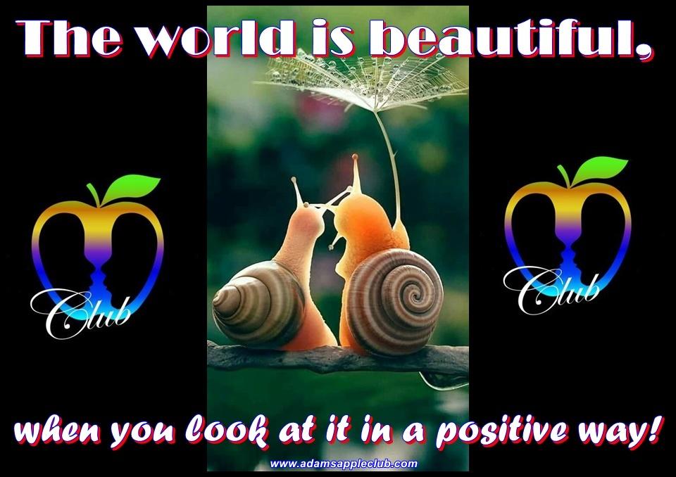 Adams Apple Club beautiful world Host Bar Chiang Mai