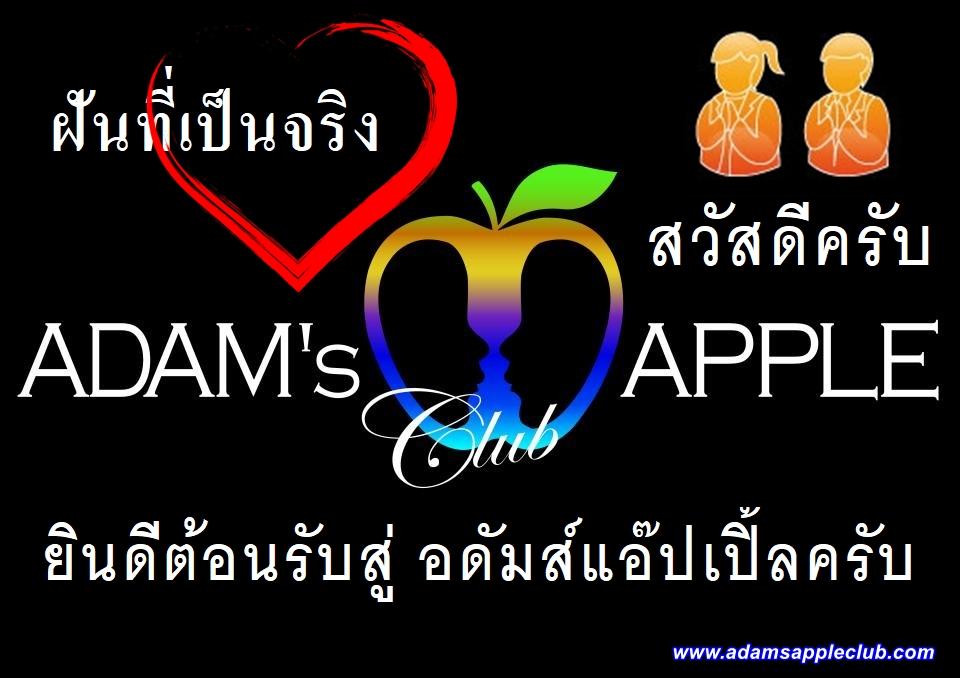 Dreams come true Adams Apple Club Gay Bar Chiang Mai Thailand