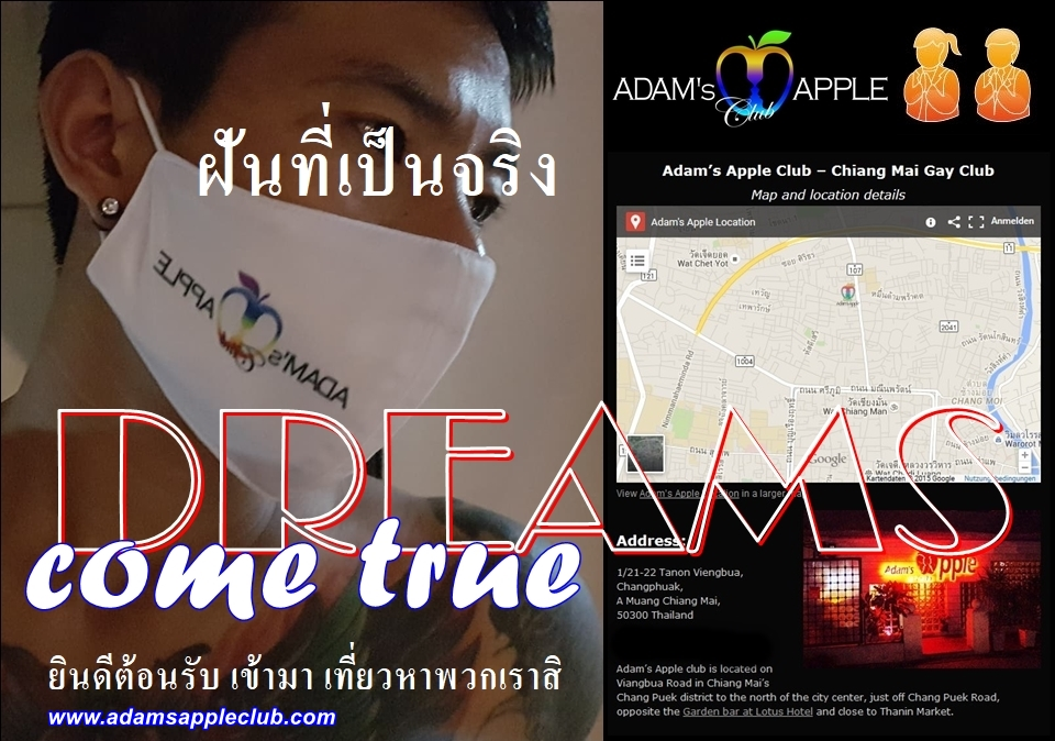 Dreams come true Adams Apple Club Gay Bar Chiang Mai