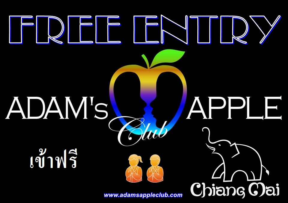 Free Entry Gay Bar Chiang Mai Adams Apple Club