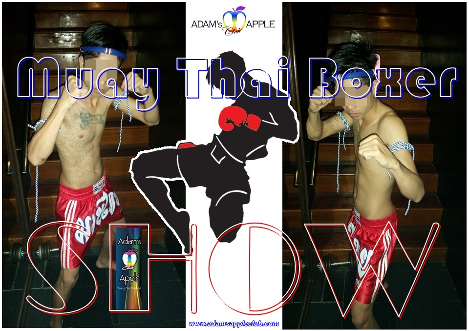 Muay Thai Boxer Adams Apple Club Chiang Mai