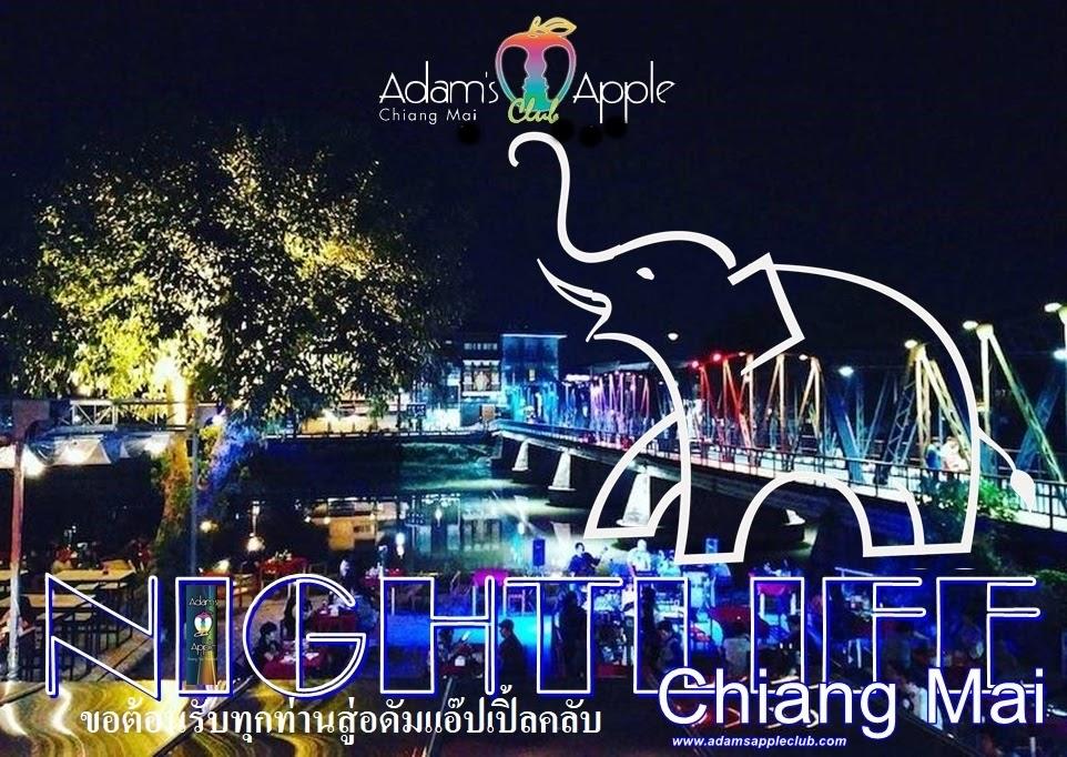 Nightlife Chiang Mai Adams Apple Club Host Bar Gay Bar Ladyboy Cabaret