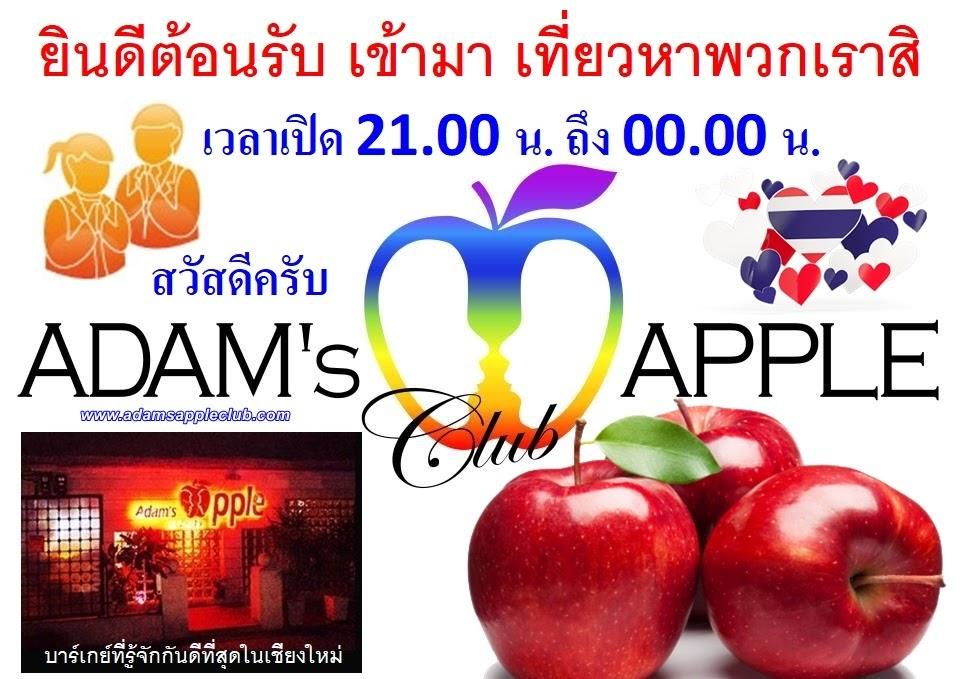 Gay Bar Chiang Mai Adams Apple Club Thailand most well-reputed Host Bar Ladyboy Cabaret Nightclub