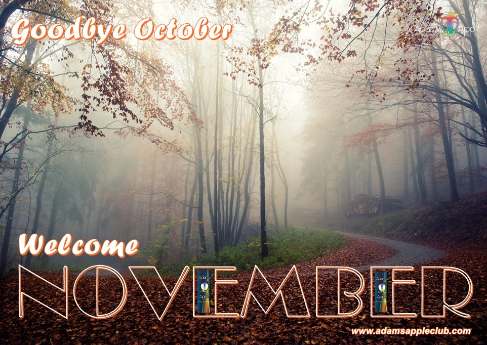 Goodbye October! WELCOME NOVEMBER 2020! Adams Apple Club Most well-reputed Gay Bar Chiang Mai, Thailand Adult Entertainment