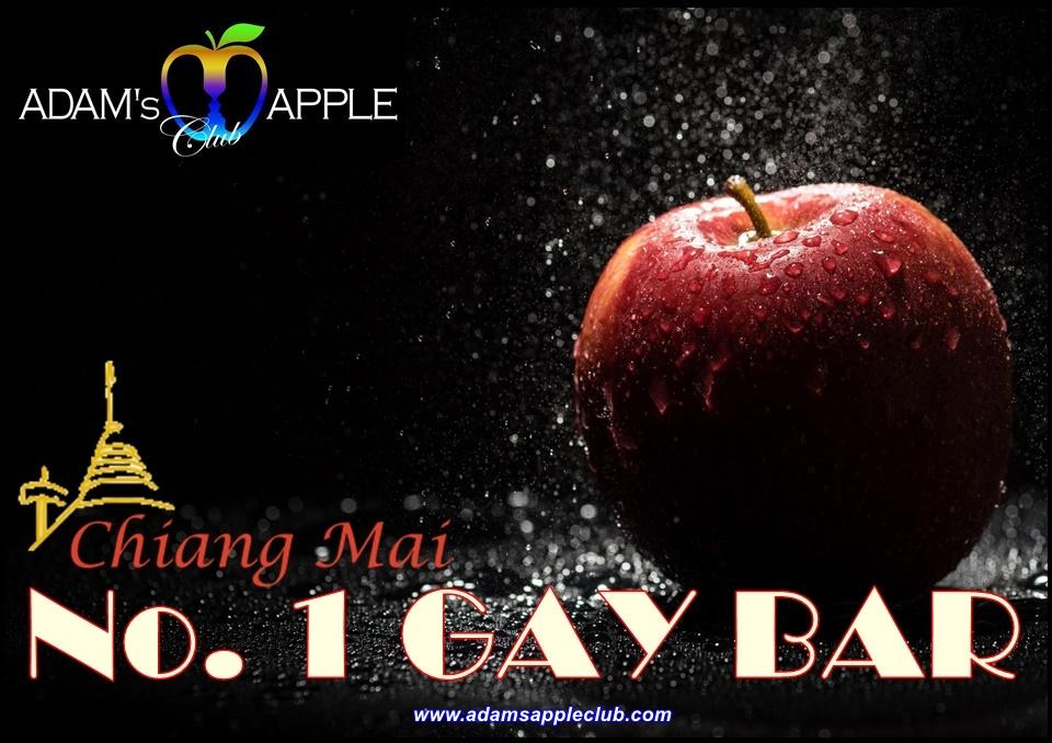 Gay Bar in Chiang Mai Adams Apple Club Thailand Adult Entertainment Host Bar