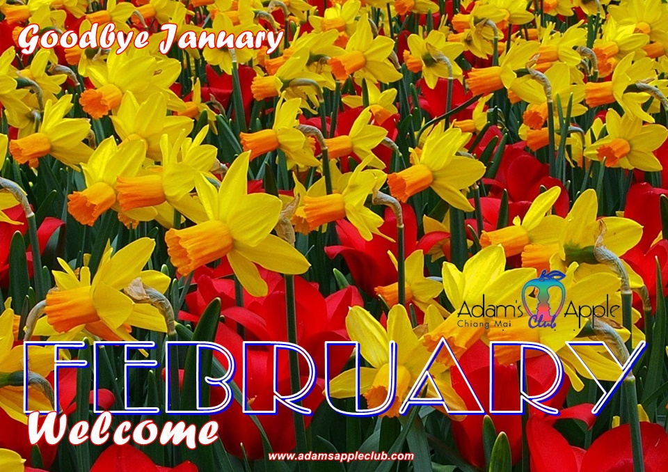 WELCOME FEBRUARY 2021 NEW BEGINNING - Are YOU ready for a NEW BEGINNING Bar Gay Chiang Mai Host Club Adult Entertainment Nightclub Ladyboy Show Thai Boy