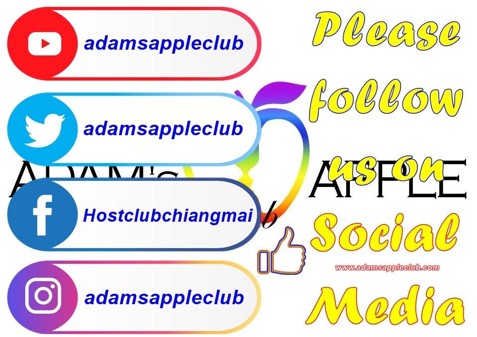 Bar Gay Chiang Mai Social Media Adams Apple Club Nightclub Bar Gay บาร์โฮสสันติธรรม บาร์เกย์เชียงใหม่ Adult Entertainment Ladyboy Show