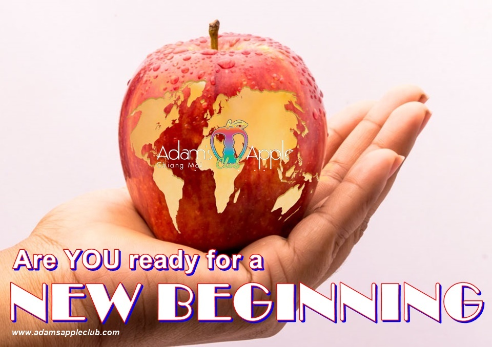 NEW BEGINNING - Are YOU ready for a NEW BEGINNING Bar Gay Chiang Mai Host Club Adult Entertainment Nightclub Ladyboy Show Thai Boy
