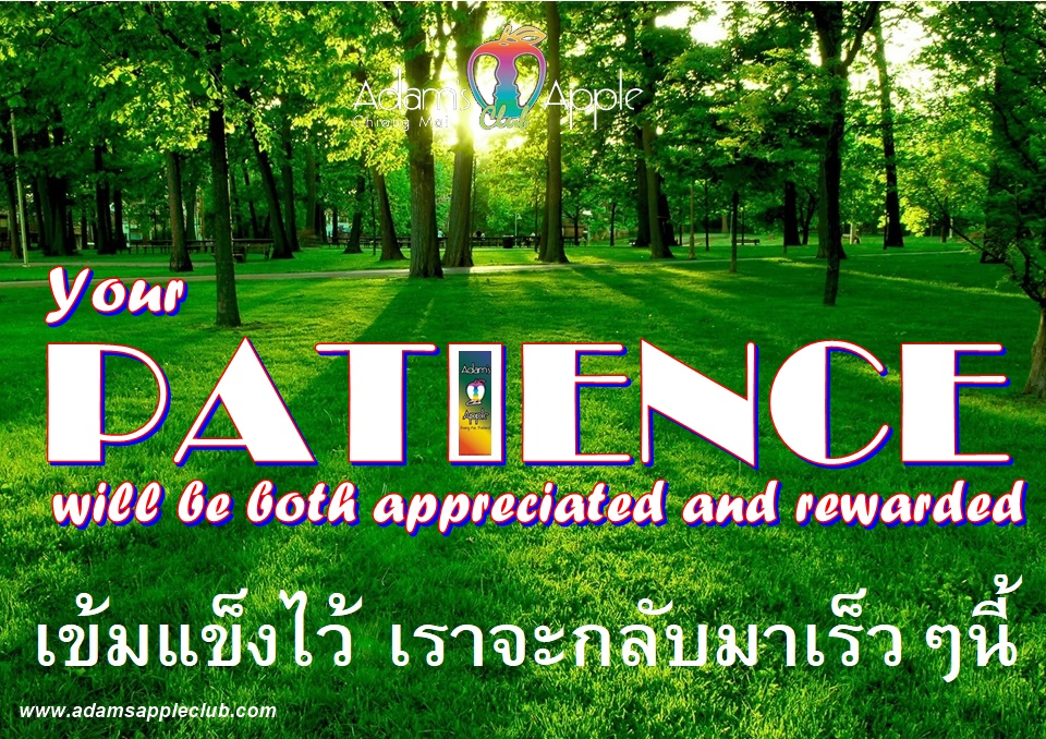 Your PATIENCE will be both appreciated and rewarded We will be back soon Adams Apple Club Chiang Mai Bar Gay Host Club Ladyboy Show