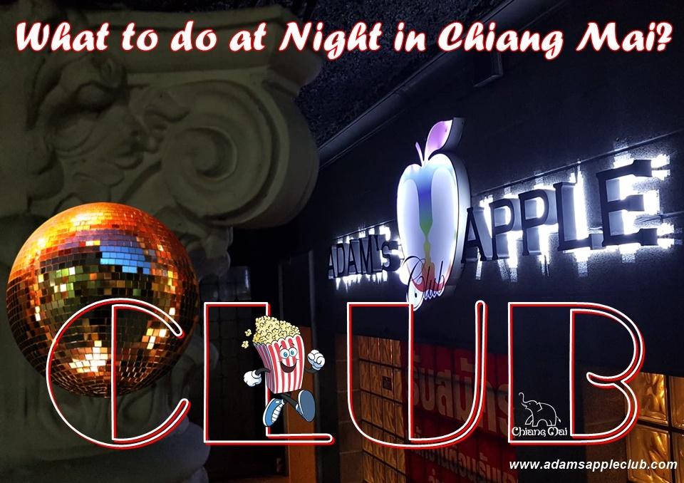 Club Chiang Mai Adams Apple Club most POPULAR Clubbing Nightclub Nightlife Night Spot with Ladyboy Liveshows Host Bar Gay Club Asian Boys LGBTQ