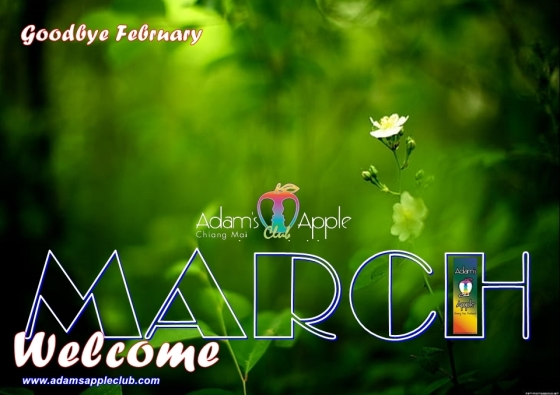 WELCOME March 2021 Adams Apple Club Gay Bar Chiang Mai Spotlight Adult Entertainment Ladyboy Liveshow Thai Boy Nightclub Gay Scene