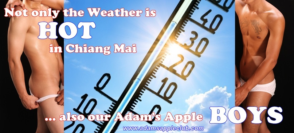 Not only the Weather is HOT in Chiang Mai ... also our Adam's Apple BOY Host Bar - Gay Club - Clubbing - Nightclub - Nightlife - Nighttime Entertainment