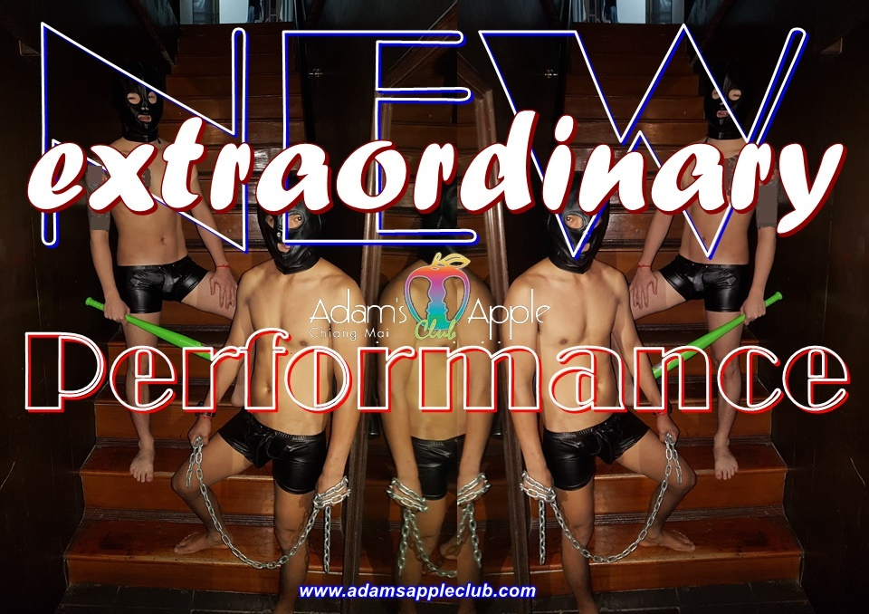 New extraordinary performance Adams Apple Club Gay Chaing Mai Come in! Handsome Asian Boys waiting for YOU! Most popular Gay Club Chiang Mai