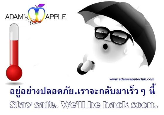 Very hot weather Adams Apple Club Chiang Mai Host Bar Adult Entertainment Gay Club Go-Go Bar Lady Boy Cabaret Liveshow LGBTQ Thai Boy