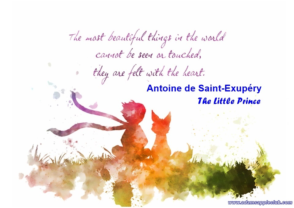 """And now here is my secret, a very simple secret: It is only with the heart that one can see rightly; what is essential is invisible to the eye."" ― Antoine de Saint-Exupéry, The Little Prince"