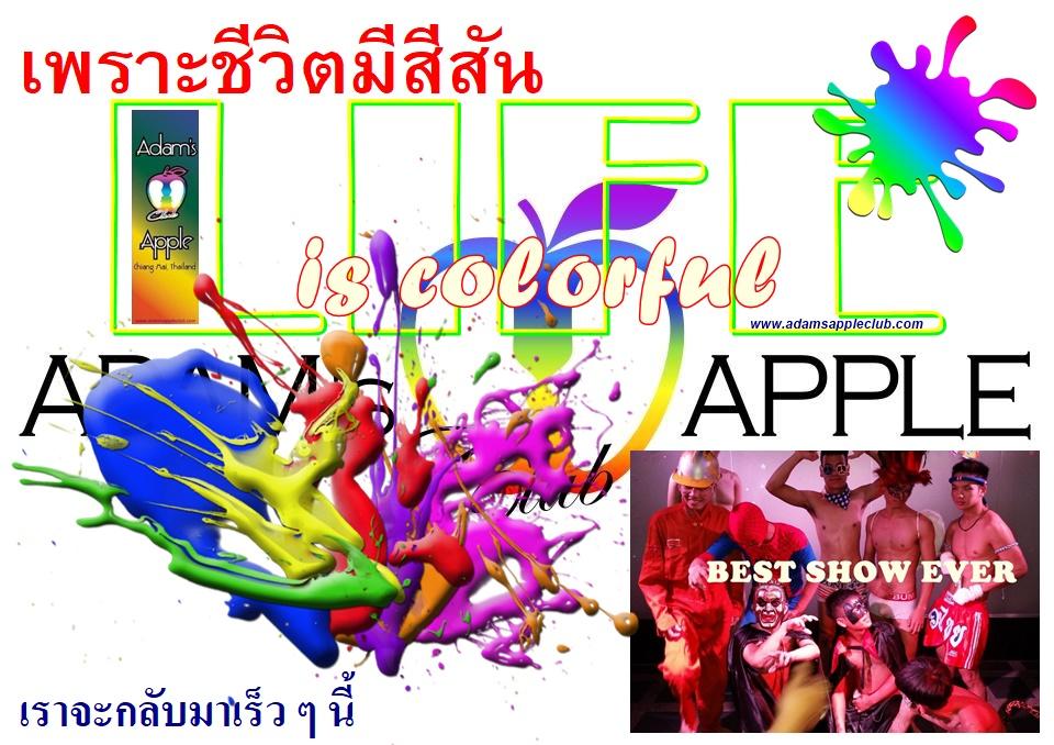 LIFE is colorful Adams Apple Club Chiang Mai Host Bar Nightclub Adult Entertainment LGBTQ Go-Go Bar Gay Club